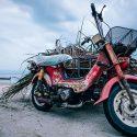 Epaviste moto / scooter